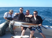 Monster Sailfish and a few Muttons
