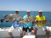 grouper and mahi !!!