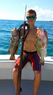 Yellowtails and Grouper