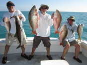 Tails, muttons, cobia